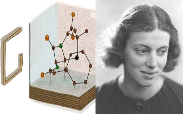 غوغل يحتلف بالذكرى الـ104 لميلاد عالمة الكيمياء دوروثي هودجكن