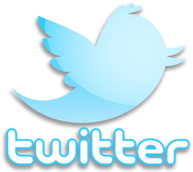 خلاف بين أردوغان والرئيس التركي بسبب حجب تويتر