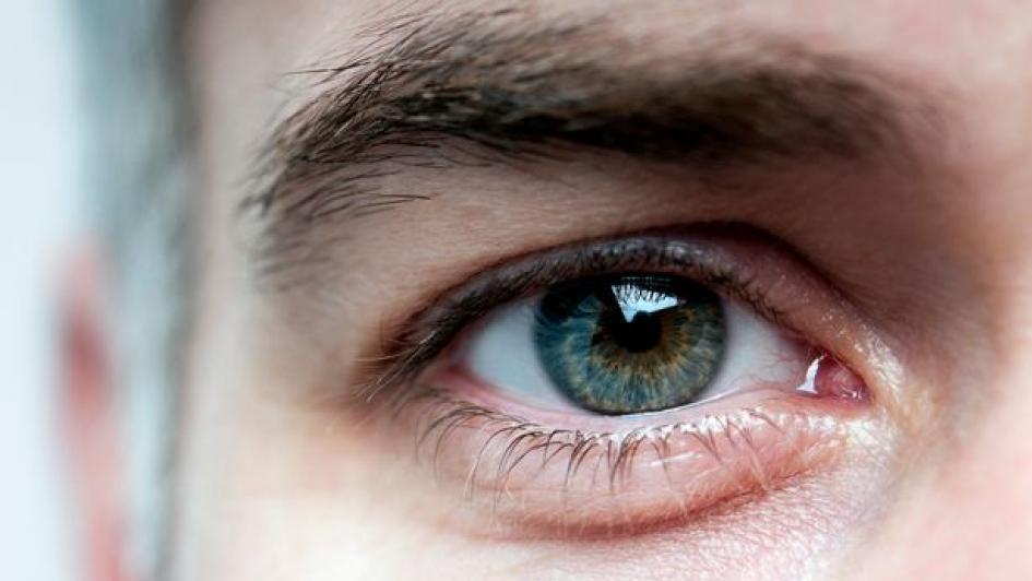 لفاقدي البصر.. نظارة بتقنية جديدة تمكنك من الرؤية مجددا